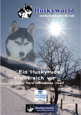 Flyer Huskyworld