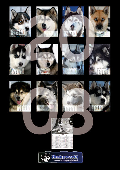 Huskyworld Kalender 2 2008
